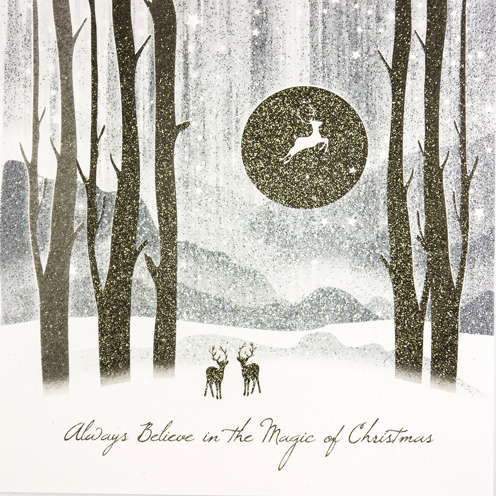 Boxed Christmas Cards.Always Believe In The Magic Of Christmas Boxed Christmas Cards 6 Per Box Tcfb5